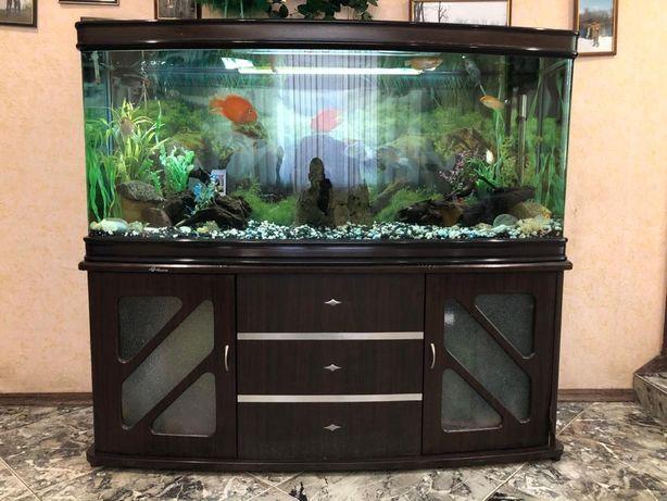 Продам аквариум 450 л. Индонезия.