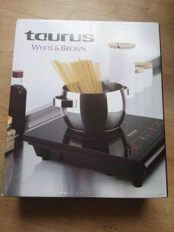 Placa de indução cozinha