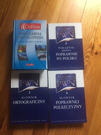Encyklopedia i słowniki j. polskiego