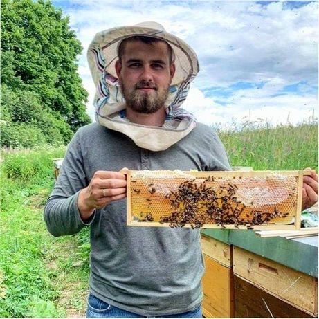 Матка пчелиная Матка 2021года Лучшие пчеломатки