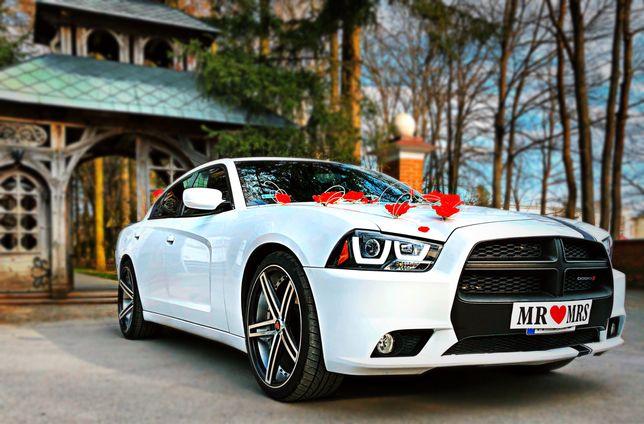 Auto do ślubu. Dodge AmCar Wedding. Samochód do ślubu