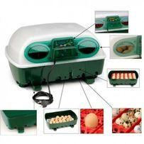 Inkubator Covina Super, automatyczny na 49 jaj -WYLĘG JAJ