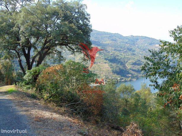 Quinta em Barqueiros na Região do Douro Vinhateiro