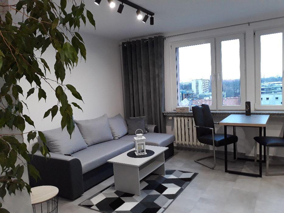 Do wynajęcia 2-pok. mieszkanie w centrum po generalnym remoncie Opole - image 1