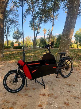 Bicicleta Elétrica E-bike Cargo Riese Muller Packster 60 Vario