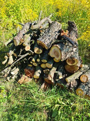 Drewno liściaste na opał