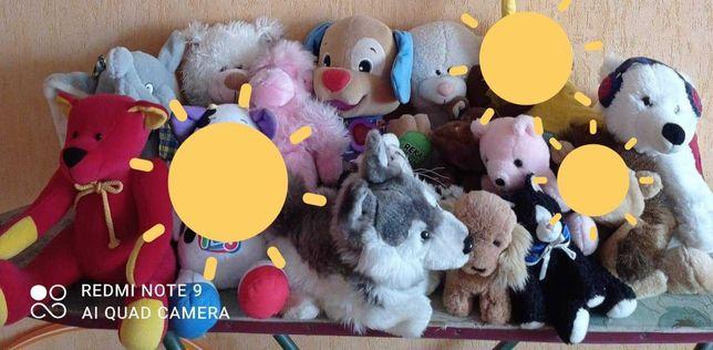 12x Maskotek Dużych Małych Zwierzątka Misie Dla Dzieci ZA DARMO