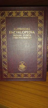 Zestaw encyklopedii