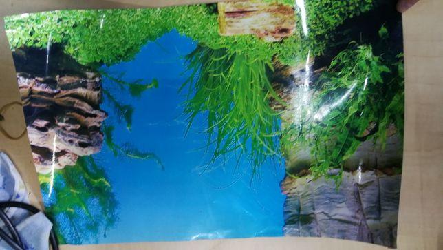 Tło dwustronne fototapeta do akwarium 40/25,5 cm