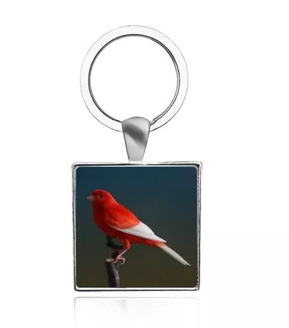 Chaveiros porta chaves personalizados aves canarios