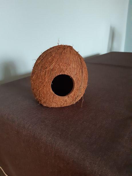 Domek kokos dla chomika, myszki