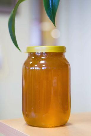 Мед натуральний (домашня пасіка)