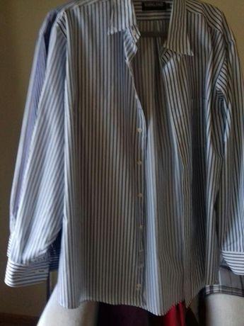 Wyprzedaż szafy koszula meska Kirkland