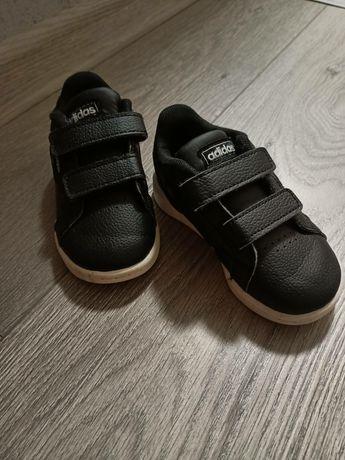 Кросівки adidas, красовки