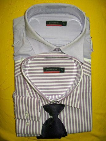 S DWIE koszule PIERRE CARDIN fiolety + krawat S