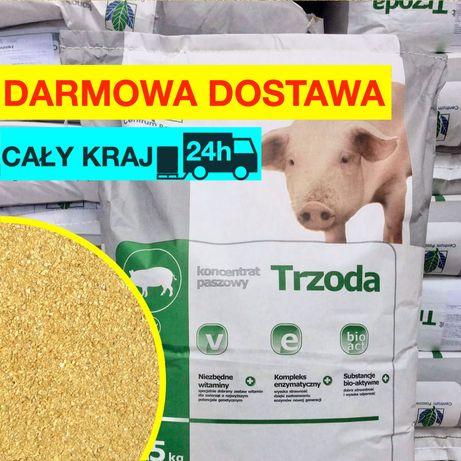 Koncentrat sojowy dla warchlaków tuczników 25kg karma pasza 41% białka