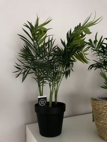 Piekna sztuczna palma/motylek