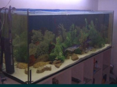 Набор новый: аквариум 200см-46см-70см + тумба (подставка). Доставка