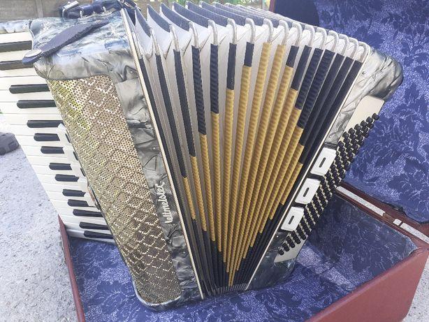 akordeon weltmeister 96