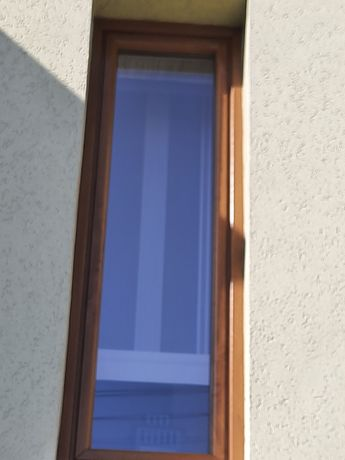 Okno złoty dąb .