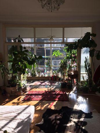wynajem przestrzeni, mieszkania pod sesje zdjęciową