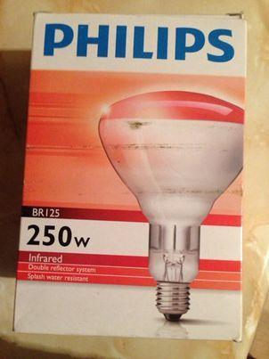 lampa grzewcza 250W firmy Philips czerwona