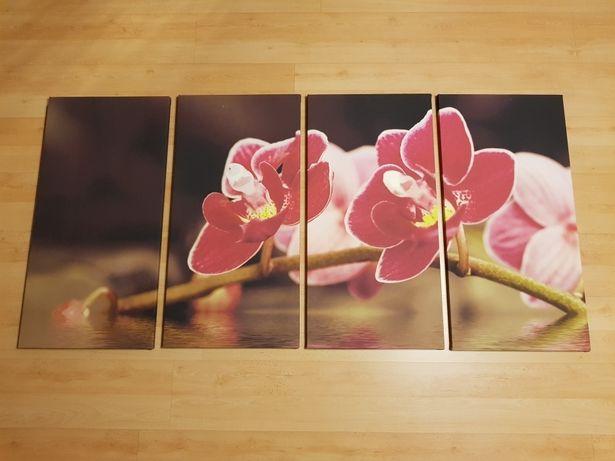 Obraz tryptyk 4 elementy 160x80 Storczyk Orchidea