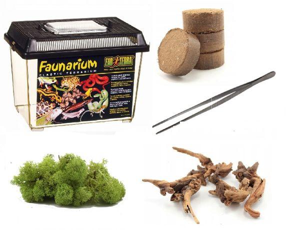Zestaw startowy ptasznik skorpion skolopendra terrarium 18x11,6x14,5cm
