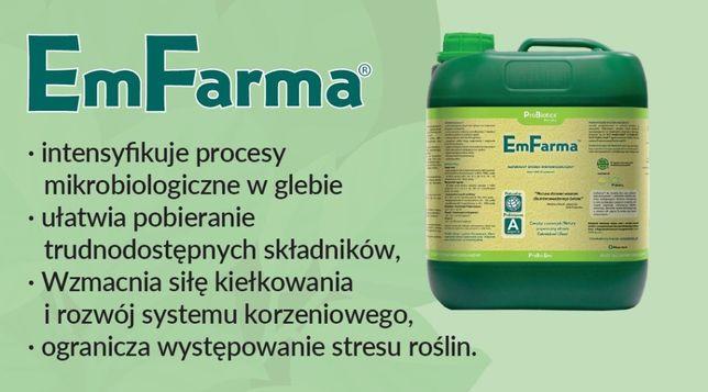 zaprawianie ziarna Em Farma zboża jęczmień, pszenica, owies, pszenżyto