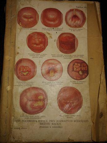 Книга стариная медицынская