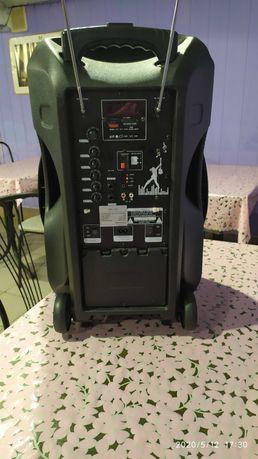 Продам музыкальное оборудование с двумя микрофонами