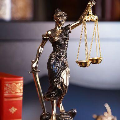 Шукаєм помічника юриста (дівчину, студентку 4-5курсу)