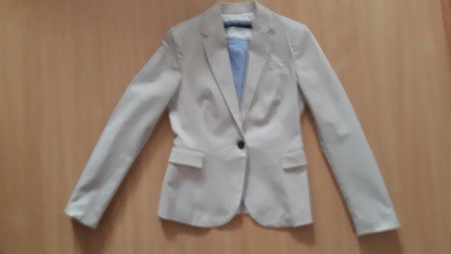 Marynarka Zara 34/36