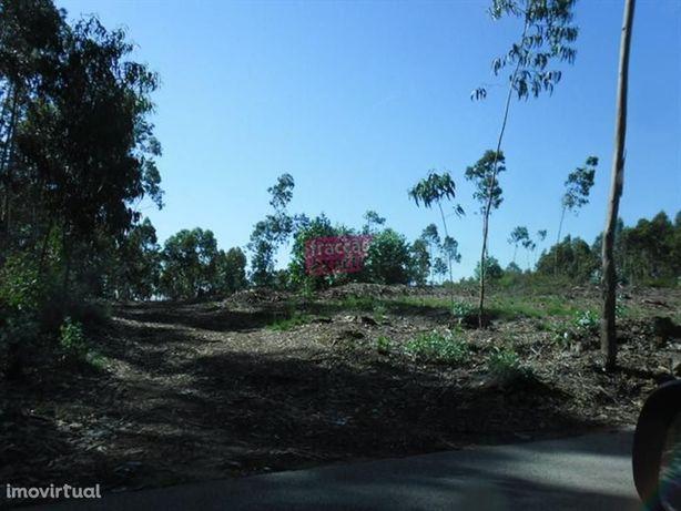 Terreno Rústico em Bougado Trofa