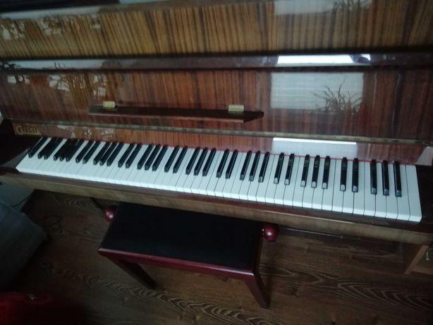 Pianino Calisia + regulowane krzesło