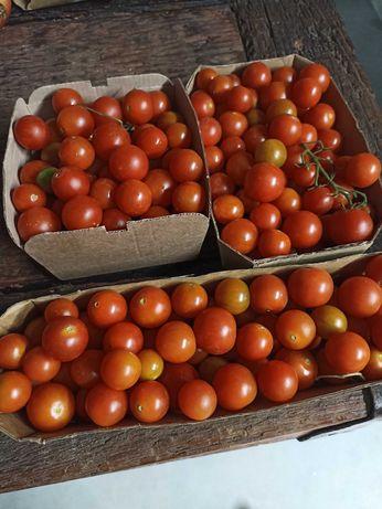Tomate cereja cherry