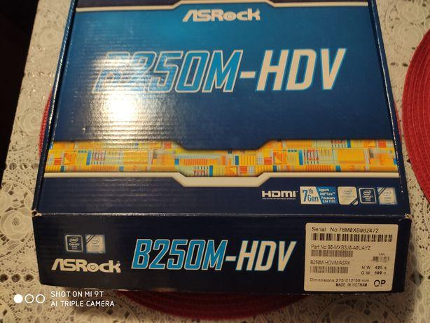 Płyta główna ASRock B250M-HDV