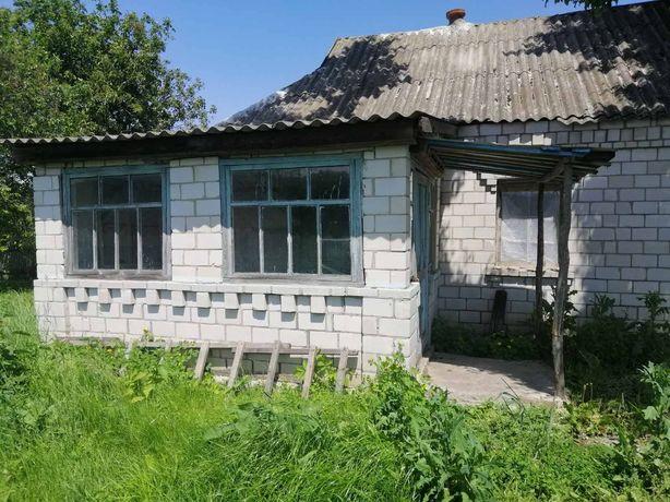 Продам приватизированрованый участок в селе Розалиевка.