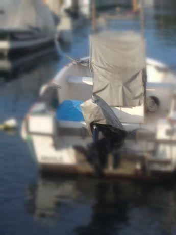 Barco fibramar 550