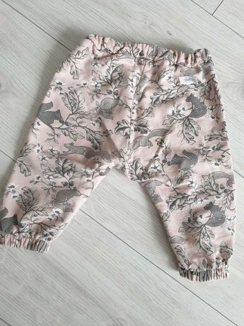 Komplet newbie 74 wiewiórki spodnie dres bluza