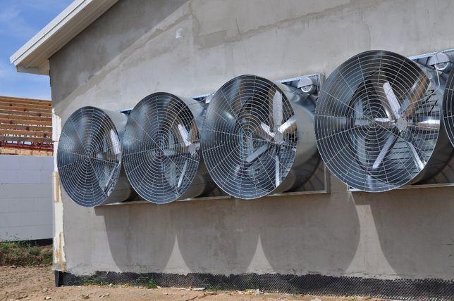 System chłodzący pad cooling w kurnikach