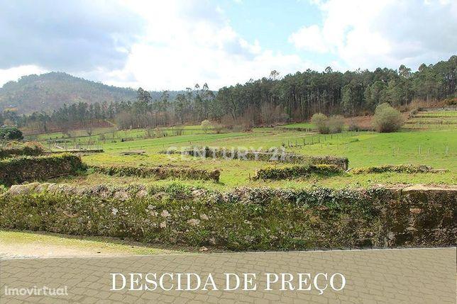 Lote de 1500 m2 para moradia térrea em Panque (barcelos)