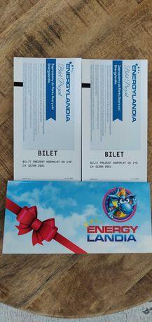 Dwa bilety normalne ważne do 24.10.2021 Energyladnia