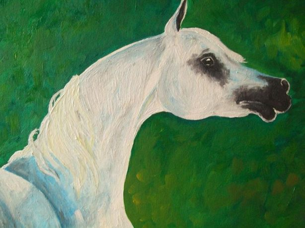 obraz olejny - koń
