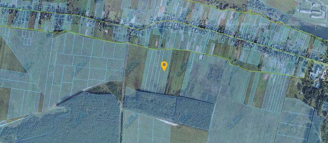 Продам земельну ділянку в Кропивні. Власник, без комісії!