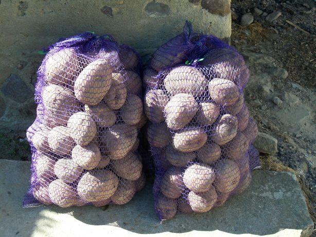 sprzedam ziemniaki bellaroza i owacja