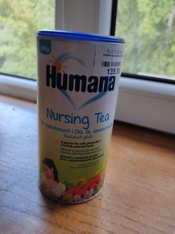 Лактаційний чай Humana. Чай для повышения лактации