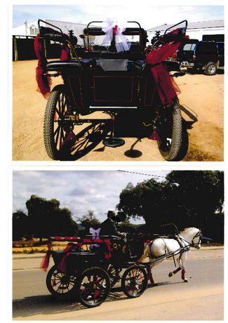 Vendo Carro de Cavalos Charrete