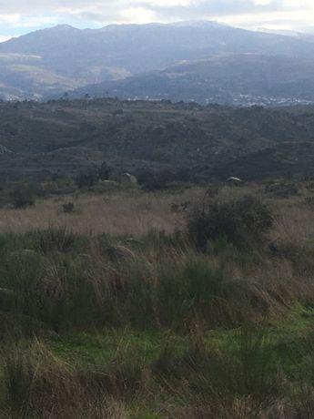 Viva no campo com vista  para a serra da estrela a 2 km de aldeia tipi