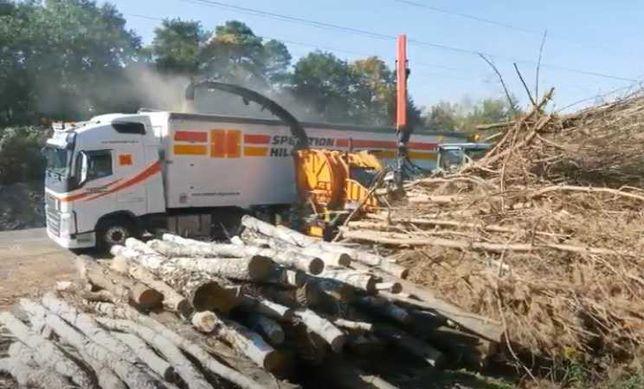 щепа тріска тирса деревні відходи деревини для котла